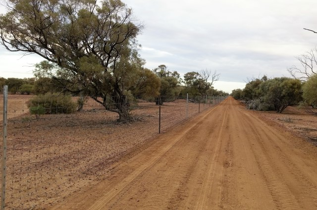 overlay fence, wild dog fencing
