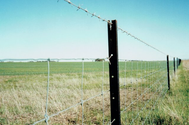 stocklock, ringlock, fencing, rural fencing