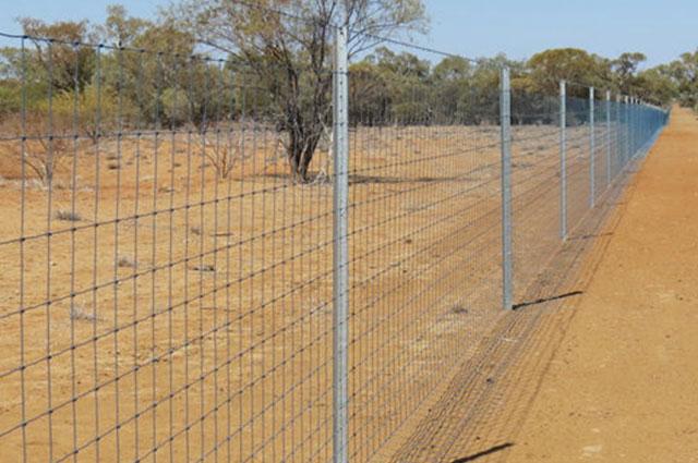 cluster fence