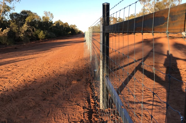 exclusion fence, outback