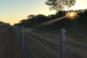 Sunset on the fence line