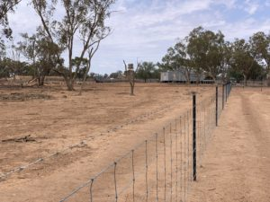 Fencing in southwest Queensland
